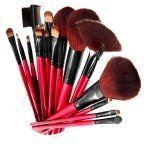SHANY Professional Cosmetic Brush Set with Pouch, 13 pc