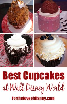 Best Cupcakes at Walt Disney World. usually an excellent value for Disney Dining Plan snack credits! Disney World Food, Disney World Planning, Walt Disney World Vacations, Disney Worlds, Disney Cupcakes, Fun Cupcakes, Disney Tips, Disney 2017, Disney Secrets