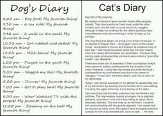 Cats & Dogs diaries