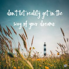 Don't let reality get in the way of your dreams. Famous Words, Quotes By Famous People, Love Your Life, Life Is Good, Wisdom Quotes, Life Quotes, Physiological Facts, Best Quotes, Funny Quotes