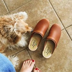 "lottafromstockholm: ""the original classic tan clogs ✨#lovemylottas #fromwhereistand #lottafromstockholm #clogsanddogs """