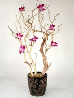 Centerpiece inspiration. Imagine the branches as white and the orchids blue...