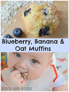 SUGAR FREE Blueberry Banana Oat Muffins - perfect for baby led weaning! :: From Wings and Roots snack desert Banana Oat Muffins, Blue Berry Muffins, Blueberry Muffins For Baby, Blueberry Recipes For Baby, Sugar Free Muffins, Fingerfood Baby, Baby Food Recipes, Muffin Recipes, Banana Recipes Toddler