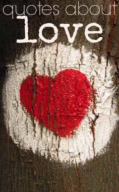 Amore. L'amour. Liebe. Love Quotes for Everyone. Everybody needs (and enjoys) quotes about love!