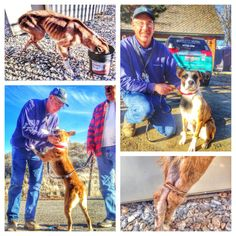 A dog who was rescued after being discovered, bound and emaciated, by a utility worker was reunited recently with the man who changed her life.