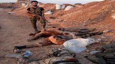 الجيش يسيطر على بلدتي سكيك واللحايا الغربية والشرقية بريف حماة الشمالي