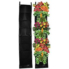 Image result for vegetable and window and sill vertical