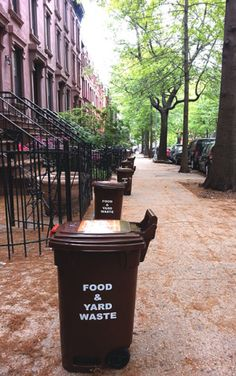 Residents in the pilot program receive brown 13-gallon bins with a latching lid and wheels to collect organics (food waste and yard trimmings). Bins are placed on the curb to be serviced by the New York City Department of Sanitation (DSNY).