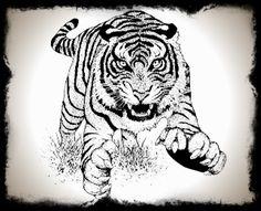 foto de chinese tribal tattoo tiger Tiger Tattoo vector illustration © Fransiskus Xaverius Kushartono