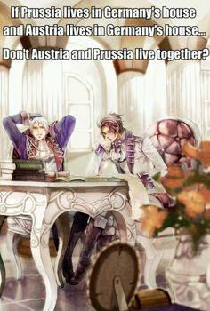 Hmmmm...true Hetalia Austria & Prussia