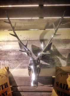 Large stag head - Perfect feature piece @ http://www.plattersinteriors.co.uk/shop/4589794855/large-stag-head---perfect-feature-piece/10073343