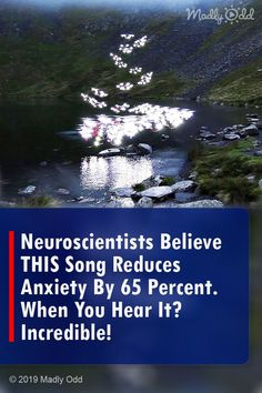 Neuroscientists Believe THIS Song Reduces Anxiety By 65 Percent. When You Hear It? Calming Music, Relaxing Music, Music Songs, Music Videos, Believe, Find A Song, Cold Home Remedies, Natural Remedies, Holistic Remedies