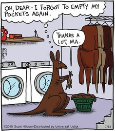 Maman Kangourou fait sa lessive - Mama Kangaroo done his laundry Cartoon Jokes, Funny Cartoons, Funny Comics, Funny Memes, Hilarious, Argyle Sweater Comic, Laundry Humor, Far Side Cartoons, The Argyle