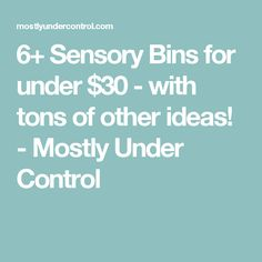 6+ Sensory Bins for under $30 - with tons of other ideas! - Mostly Under Control