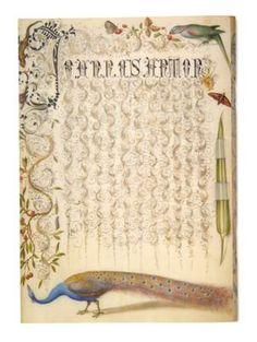"Georg Bocskay, calligraphy; Joris Hoefnagel, miniature painting, ""Folio 94,"" from Calligraphic Specimen Book, 1591-94 miniature painting; 1571-73 calligraphy. Parchment, watercolours and opaque paint, silver and gold heightening, 18.8 x 14 cm. Kunsthistorisches Museum, Vienna, inv. no. KK 975 Illuminated Letters, Illuminated Manuscript, Decorative Lettering, Fabric Journals, Penmanship, Beatrix Potter, Book Binding, Scripts, Ink Art"