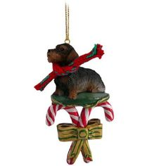 Wire Haired Dachshund Red Candy Cane Ornament
