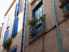 A window in the street of Collioure #MissTanuki #deviantART #France