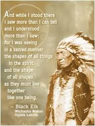Native American words of Wisdom from Chief Black Elk Native American Prayers, Native American Spirituality, Native American Wisdom, Native American History, American Indians, American Pride, American Women, Indian Spirituality, Native American Legends