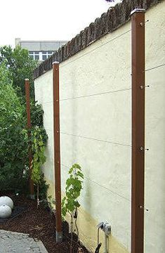 Wire frame for wine, raspberries, blackberries and espalier fruit, Climbing frame. Grape Vine Trellis, Grape Vines, Sweet Potato Plant, Espalier Fruit Trees, Grape Arbor, Potato Vines, Pot Jardin, Fall Planters, Colorful Plants