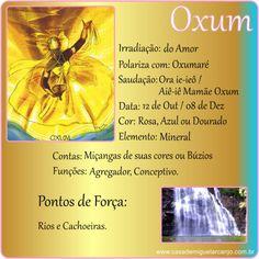 Infográfico_Oxum_Dados-Gerais.jpg (504×504)