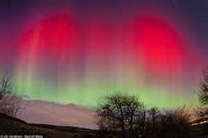 Arora Lights - Bing Images