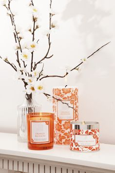 Orange Blossom Scented Candles - A romantic sweet citrus with notes in muguet lily and fresh greenery. Available as jar candles, candle travel tins, pillar candles, tealights, in candle gift boxes, scented reed diffusers and filled hurricane glasses.