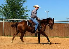 Leading Reasons:  Clinician Chris Cox explains the importance of leads to achieving speed and balance in barrel racing turns. - Barrel Horse News