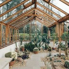 stunning cacti greenhouse located at 'Winterbourne House & Gardens' in the UK. Image by one of our favourite accounts @haarkon_ 🌿