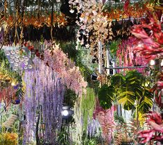 Dior's fashion show for Spring 2014 done under gorgeous floral canopy.