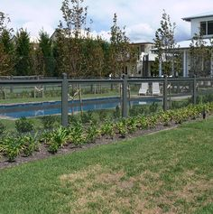 If you are looking for a less obtrusive type of pool fencing that still keeps the area safe, Dolphin can help! We also work with attractive aviary wire. Mesh Pool Fence, Front Fence, Fence Around Pool, Country Pool, Bird House Kits, Farm Fence, Fence Art, Fence Landscaping, Swimming Pools Backyard