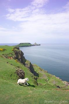 Worm's Head in the Gower is an exceptionally peaceful and extraordinarily beautiful place!