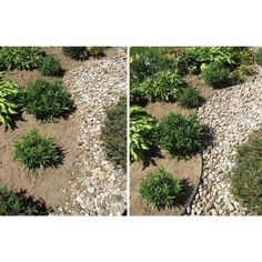 Dimex E-Z Edge 24 ft. Non-Painted Aluminum Landscape Edging Project Kit in Silver-1806ML-24C - The Home Depot
