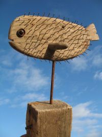 puffer fish Drydock Driftwood