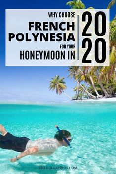 Why you should choose to spend your honeymoon in French Polynesia in 2020 - the best honeymoon ideas to enjoy a vacation in islands like Tahiti, Bora Bora, Moorea, and other French Polynesian islands #traveldream #beautifulvacations #traveltogether Best Honeymoon, Honeymoon Ideas, Honeymoon Destinations, Bora Bora, Tahiti, Cheap Tropical Vacations, French Polynesia Honeymoon, Best Island Vacation, Polynesian Islands