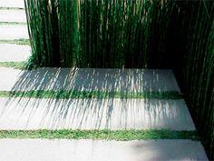 LandscapeOnline.com :: Article : Landscape Design for the modern, minimalist home