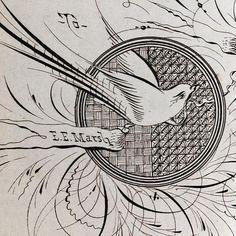 3d88919ff4296 1890 Antique Original Signed Calligraphy   Ornamental Penmanship   Bird  Flourish   Basket Weave   Double Matted - Ready to Frame 8 x 10 LDN