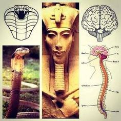 Metaphysics and the end of religious confusion (The true temple of God) Ancient Aliens, Ancient Egypt, Ancient History, Ange Demon, Spirit Science, Black History Facts, Ancient Mysteries, African History, Ancient Civilizations