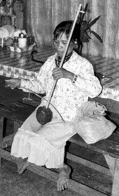 Spike fiddle dayuday.  Claveria, Misamis Oriental