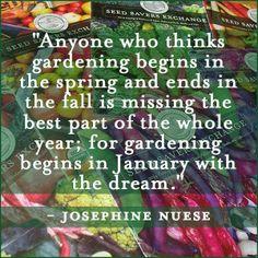 the garden: January's Dreams