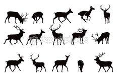 Deer deer deer