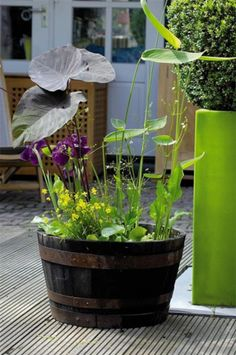 Compact water features, small-space landscaping, garden inspiration, and of course all things relating to container water gardening, patio ponds and much more. Container Pond, Container Water Gardens, Container Gardening, Balcony Gardening, Urban Gardening, Large Water Features, Water Features In The Garden, Patio Pond, Garden Pool