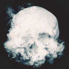 ****Sophia Ahamed- This work of Sophia's appealed to me because of the such hard contrast from the focus to the background. I love that the skull looks as though it is smoking. It brings a creepy, yet amazing look to the piece. It looks like it should be an album cover to a band. How the skull fades out at the mouth and turns to smoke makes your eye follow the smoke and wonder where it is going and makes you question where it is coming from and why it is smoking.