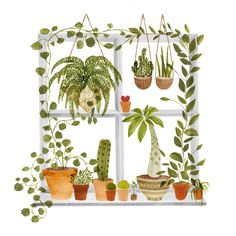 21 / print on fine art paper (acid free, archiveable and lightfast) and printed in Bristol, UK. A tangle of houseplants in a wild window. Plant Painting, Plant Drawing, Plant Art, Painting Art, Watercolor Plants, Watercolor Paintings, Watercolor Artists, Abstract Paintings, Oil Paintings