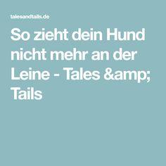 So zieht dein Hund nicht mehr an der Leine - Tales & Tails