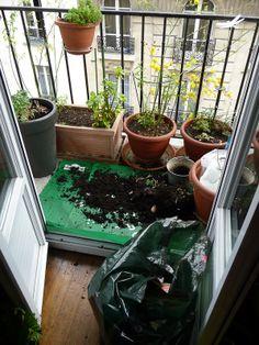 Grosse séance de jardinage sur mon balcon http://www.pariscotejardin.fr/2014/03/grosse-seance-de-jardinage-sur-mon-balcon/