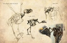 peter han dynamic sketching - Google Search