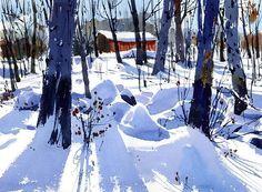 Snow shadows - Shari Blaukopf