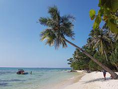 Ismerkedjetek meg egy turisták számára viszonylag ismeretlen kis indonéz szigettel. Karimunjawa sziget a Jáva-tengerben Jáva szigetétől 70 kilométerre északra található. Jávára, Jogyjakartábarepülővel érkeztünk Kuala Lumpurból. Karimunjawa megközelítése Jáváról, Jepara vagy Semarang kikötőjéből hajóval vagy Semarangból repülővel lehetséges. A fő szigetet több kisebb sziget veszi körül, melyek mindegyike fehér homokos pálmafás tengerparttal vár. Karimunjawa észak-déli irányú … Borobudur, Beach, Water, Travel, Outdoor, Water Water, Aqua, Viajes, Outdoors