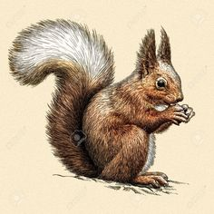 ACEO Limited Edition Animal art print Story of fall Cute squirrel in autumn