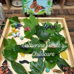 Instagram Mini Beasts, Preschool, Instagram, Kid Garden, Kindergarten, Preschools, Kindergarten Center Management
